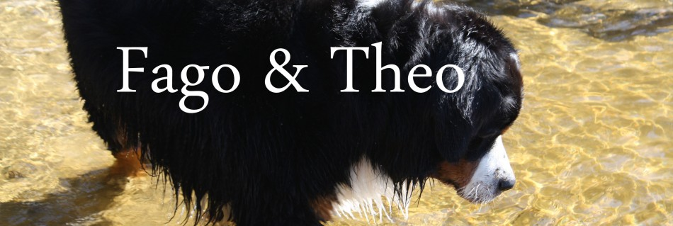 Fago & Theo